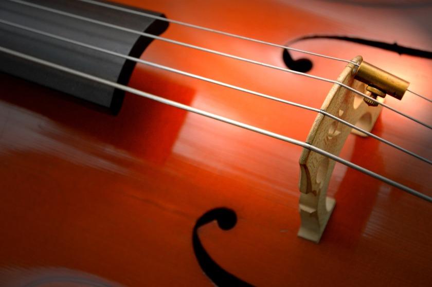 cello-2820987_1920